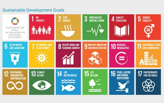 Parliament's Role in Implementing the Sustainable Development Goals: A Parliamentary Handbook